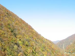 Photo: 有峰林道小見線から