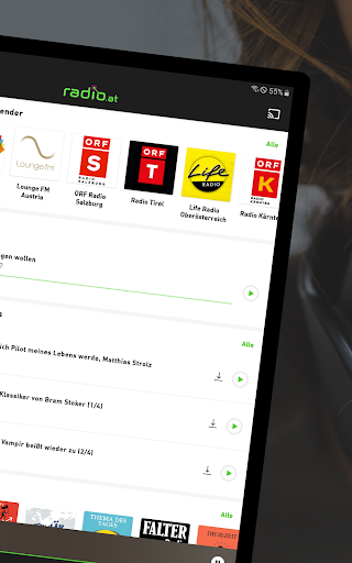 radio.at - Radio und Podcast screenshot 9