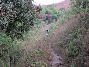 Photo: Jungle again below Bhattara Mane area. steep climb