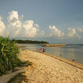Ujung Genteng Beach by Mulawardi Sutanto - Landscapes Beaches ( sukabumi, west java, ujung genteng, beach, travel )