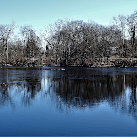 Sapphire Pool by Kathy Woods Booth - Landscapes Waterscapes ( mirrored reflections, calm, peaceful, park, blue, waterscape, reflections, trees, tranquility )