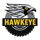 Download Sim Hawkeye For PC Windows and Mac