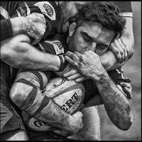 Holding on by Ian Pinn - Sports & Fitness Rugby (  )