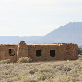 Ruin by Krista Maré - Buildings & Architecture Other Exteriors ( karoo, dry, ruin, tankwa, house )