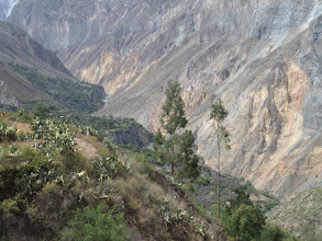 Photo: Colca-Schlucht