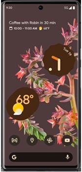 Pixel 6 Pro