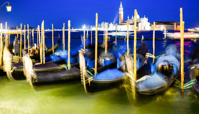 Venice di Diana Cimino Cocco