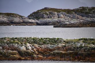 Photo: Inseln vor dem Hotel