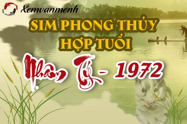 sim-phong-thuy-hop-tuoi-nham-ty-1972