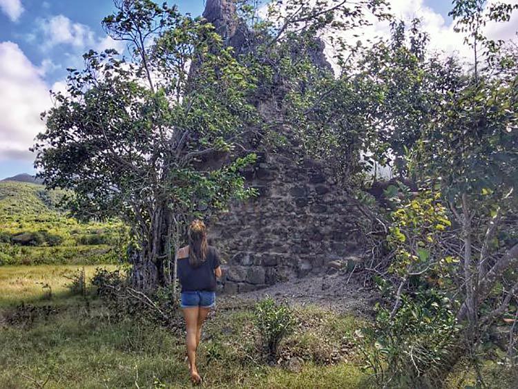 Exploring Nevis's nature scene.