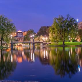 Boston Public Garden's frogpond at night  by Paul Gibson - City,  Street & Park  City Parks ( boston, reflections, night, bridge, long exposure, footpath,  )