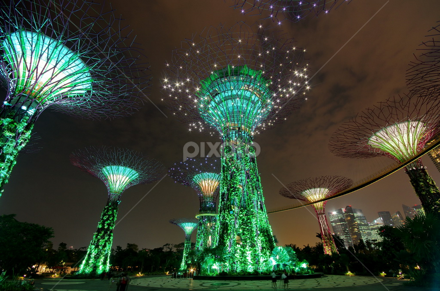 Super Trees @The Gardens by Ken Goh - Buildings & Architecture Other Exteriors