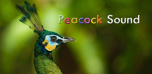 Peacock Sounds – Apps bei Google Play