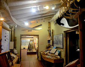 Photo: 54. They have quite a few stuffed animals, particularly many birds. If you're a naturalist at heart ... or if you're looking for something to do in inclement weather, this museum is a great way to spend an hour.