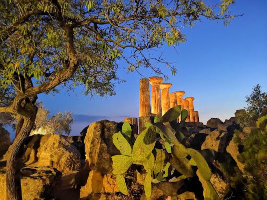 La Natura contempla il Tempio di erika1012