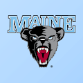 Black Bear Nation APK