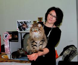 """Photo: Когда """"своя ноша не тянет"""" -))).. 8 кг веса любимого котяши.. Мы с Левшой.. утро второго дня выставки.."""