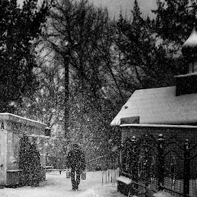Snowy mood by Giuseppe Conti - Black & White Portraits & People ( winter, landscape, people )