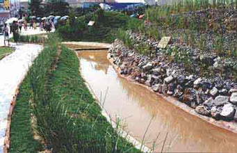 Photo: CHN-UR04 Vetiver planted along side of drain in China
