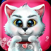 Kitty Pet Wash Dressup Game