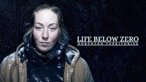 Life Below Zero: Northern Territories thumbnail