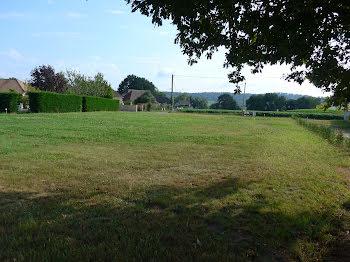 terrain à Nousty (64)
