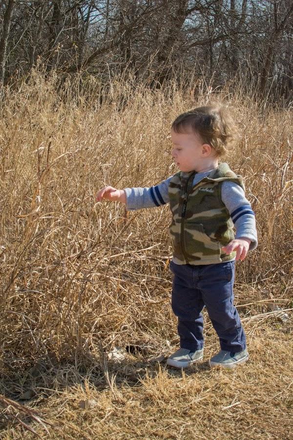 Exploring Tall Grass by Eva Ryan - Babies & Children Children Candids ( wheat, child, feel, explore, touch, grass, young, boy,  )
