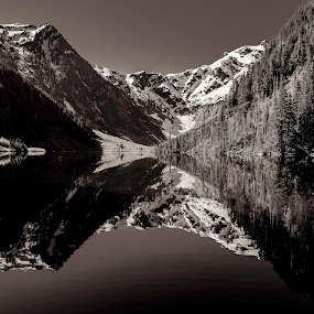 Paradise by Dale Slater - Black & White Landscapes ( mirrored reflections, glacier, mountains, snow, lake )