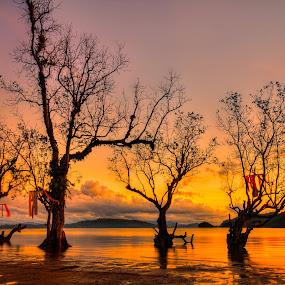 by Joe Joe - Landscapes Sunsets & Sunrises