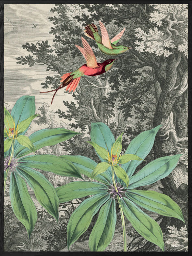 Flying birds poster 50x70