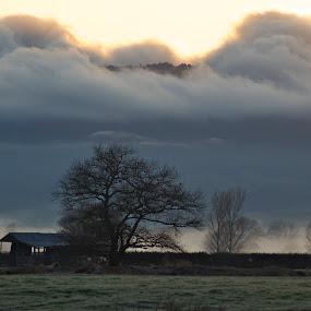 Rolling In by Bryan Lowcay - Landscapes Prairies, Meadows & Fields (  )