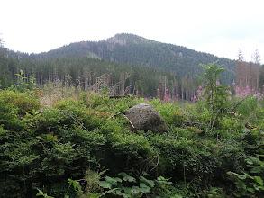 Photo: D9020147 spacer Dolina Olczyska