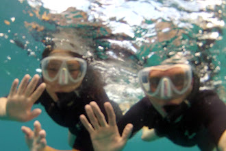 Photo: Snorkeling in Maui http://ow.ly/caYpY