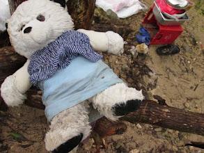 Photo: A child's teddy bear