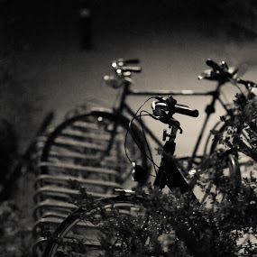MTB photo hunt by Max Mayorov - Transportation Bicycles ( b&w, handle, grill, lamp, white, selective focus, steering, night, dof, handlebar, black, bicycle )