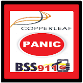 BSS911 Copperleaf