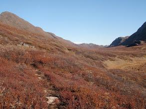 Photo: Greenland - Day 6