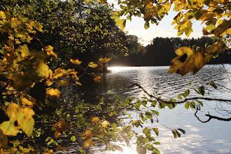 Photo: Herbstidylle am Ostufer des Großensee