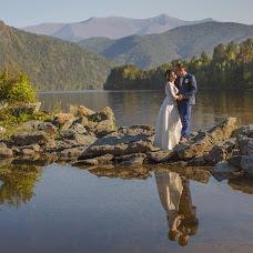 Wedding photographer Darya Sergienko (studiomax). Photo of 10.10.2015