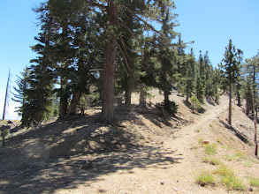 Photo: 3:32 - Saddle junction (7470'). View south