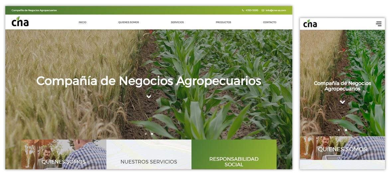 Sitio web CNA