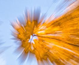 Fotó: Őszi üstökös