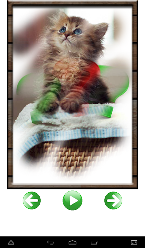無料教育Appの研究動物サウンド|HotApp4Game