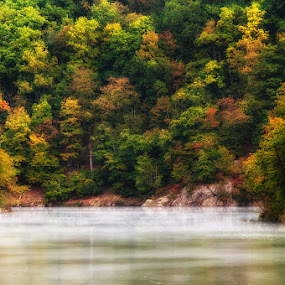 Misty river by Jozef Micic - Landscapes Waterscapes ( colorful, autumn, colors, fall, river )