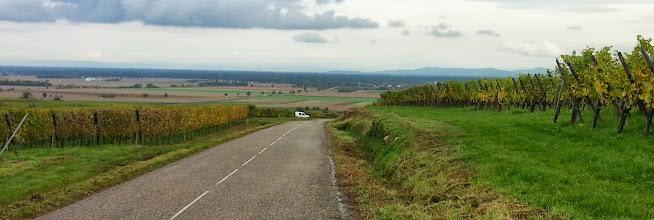 Photo: Vue sur la plaine d'Alsace et le massif allemand de la Forêt Noire, vers Zellenberg