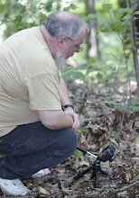 Photo: Walt  Sturgeon taking a shot of Amanita flavorubescens
