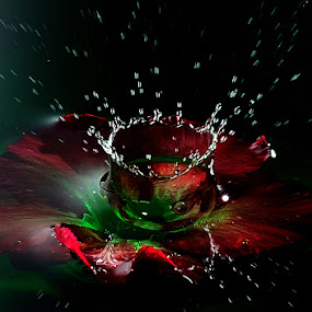 water boom by Ananta White Wings - Artistic Objects Other Objects