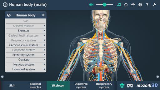 Human body (male) educational VR 3D 1.19 screenshots 4