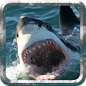 Wild Hunter Shark Simulator 3D