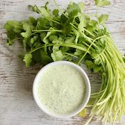 Cilantro Lime Sour Cream